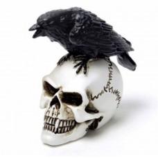 Raven Skull: Miniture