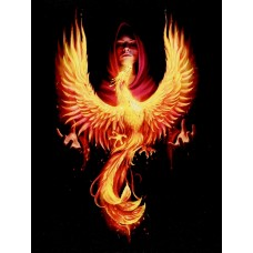 19x25cm phoenix rising canvas plaque by Anne Stokes