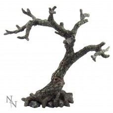 The Sacred Oak 25cm